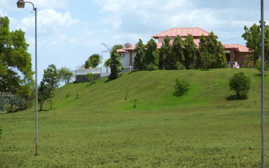 Finca-Hacienda-300000M2-SeVende-ForSale-Chorrera-Panama-CaobaRealty
